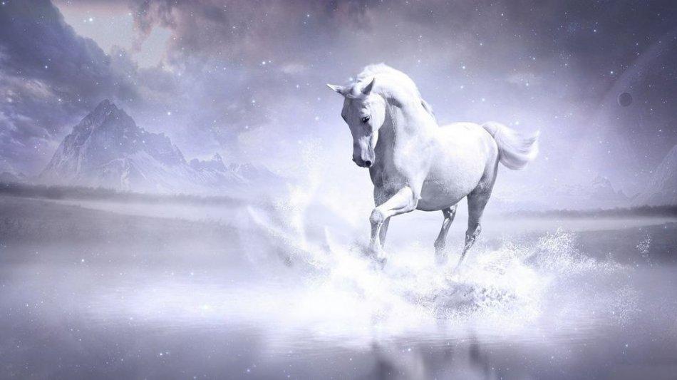 Мифический белый конь фото
