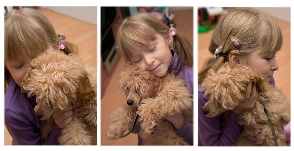 Ребенок и собака фото