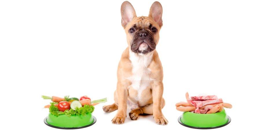 Натуральная еда для собаки