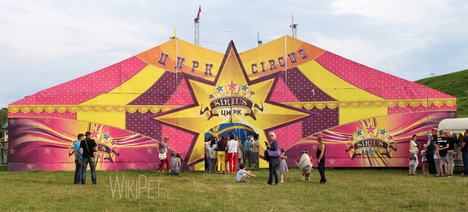 цирк сириус