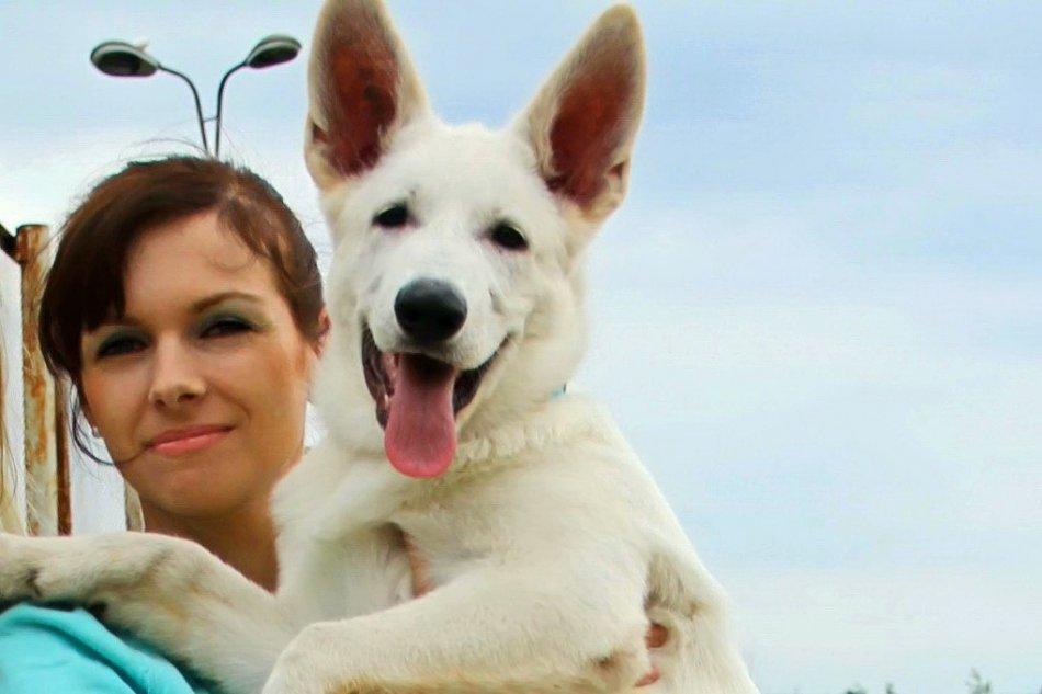 щенок белой швейцарской овчарки фото