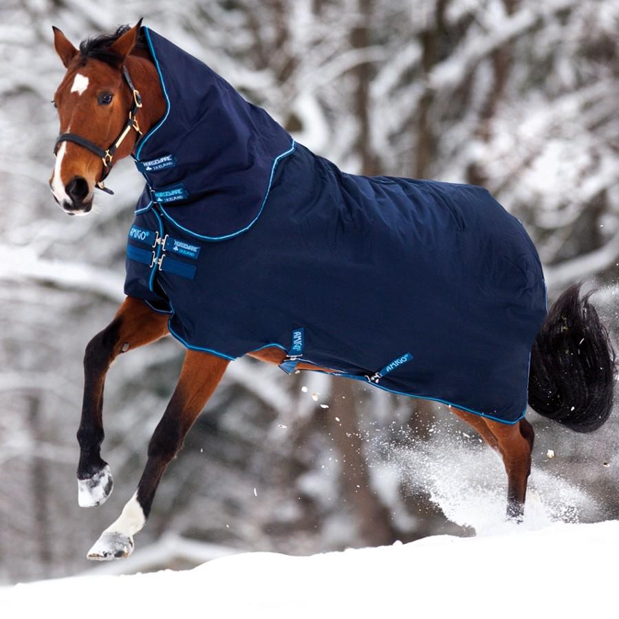 лошадь в попоне фото