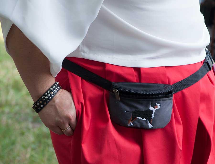 сумочка для лакомств