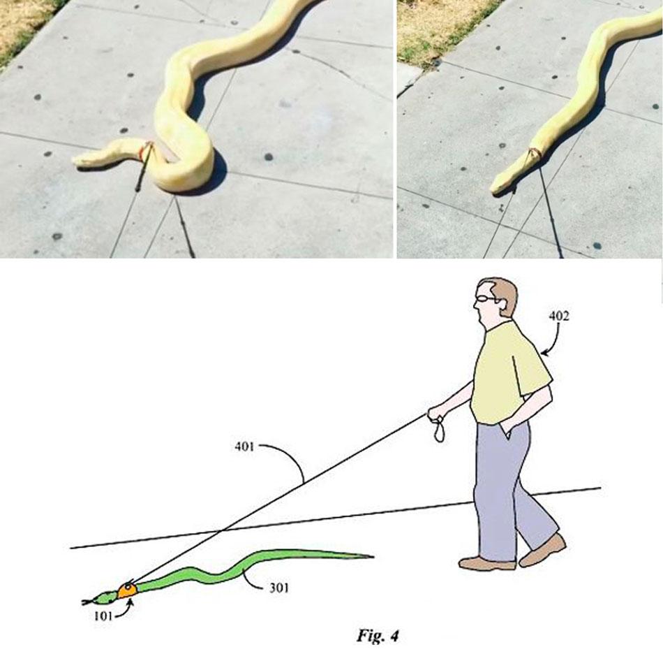 Поводок для выгула змей