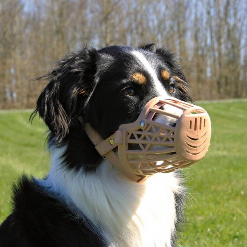 Пластиковый намордник для собаки