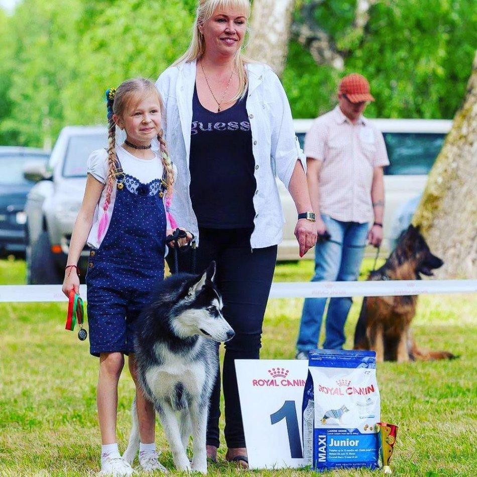 юный хендлер и собака породы хаски победили в конкурсе