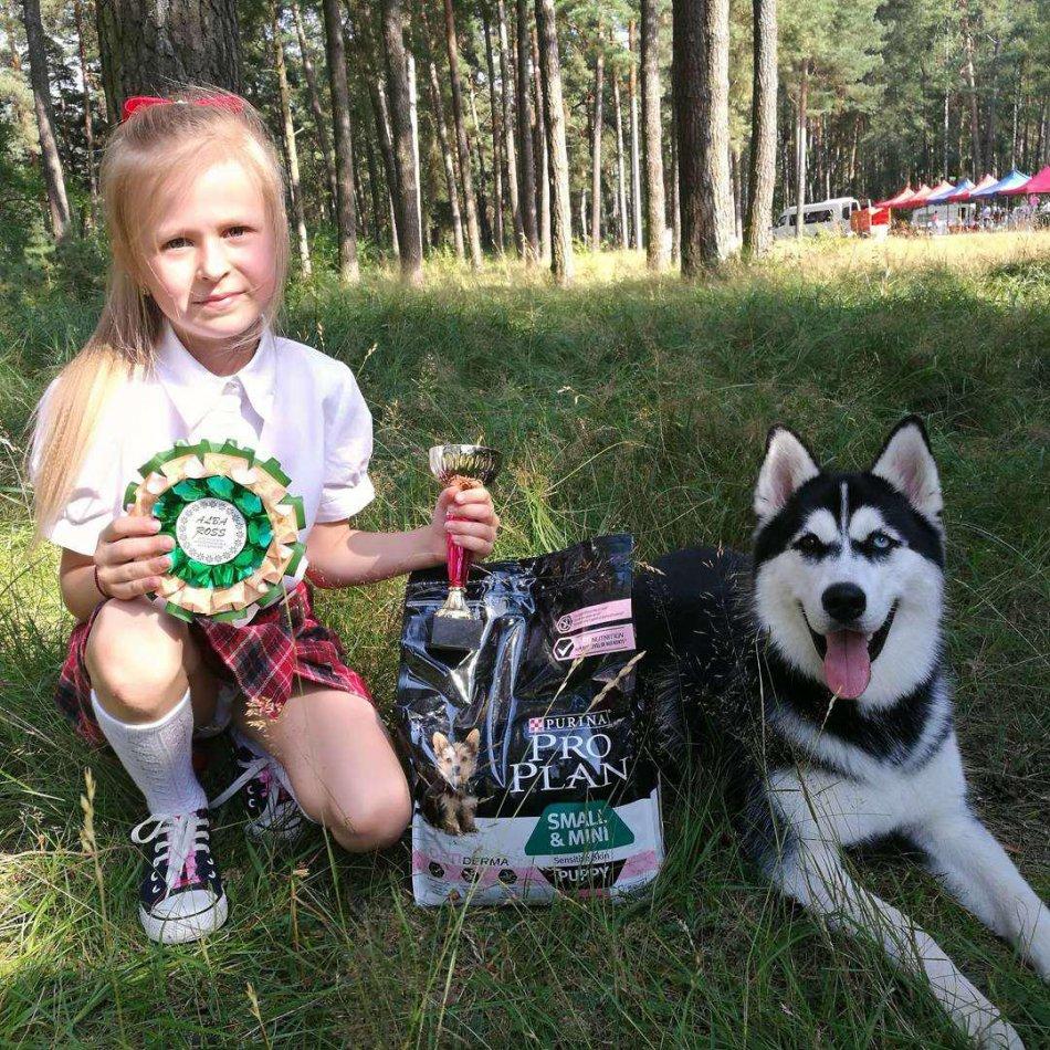 юный хендлер и собака породы хаски