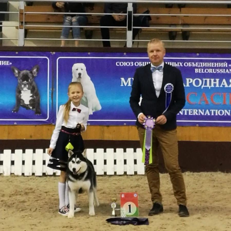 юный хендлер и собака породы хаски с судьей на ринге