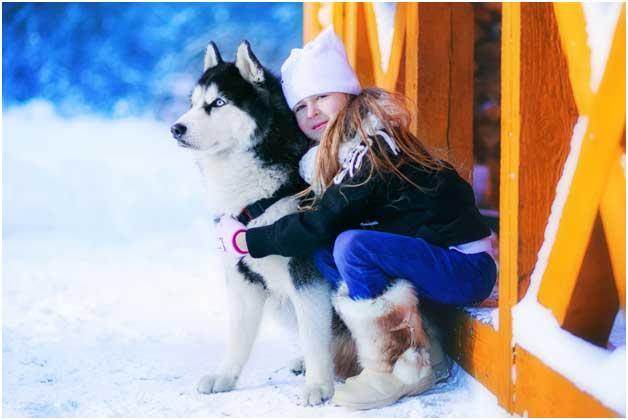 девочка обнимает собаку хаски