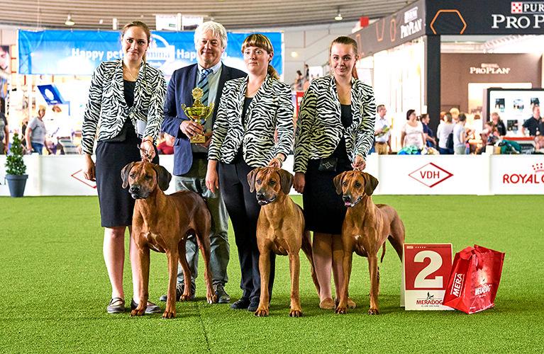 Чемпионат мира 2017 в Лейпциге: Мы любим собак