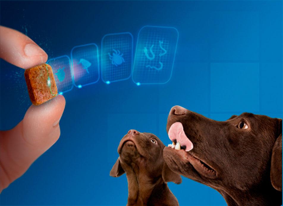 Капли от клещей и глистов для собак