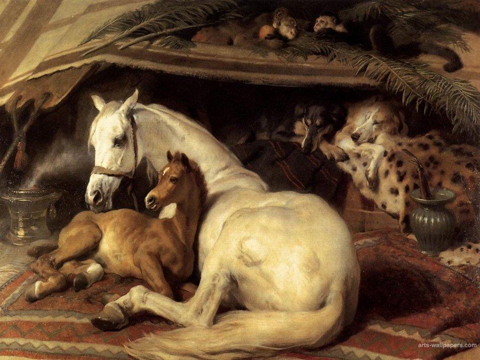 Эдвин Ландсир Арабские лошади