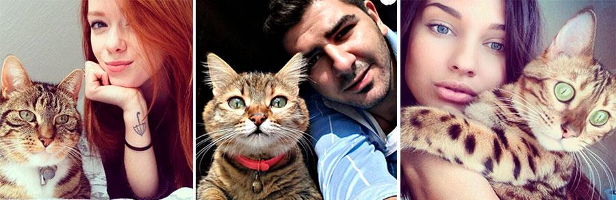 селфи с кошками
