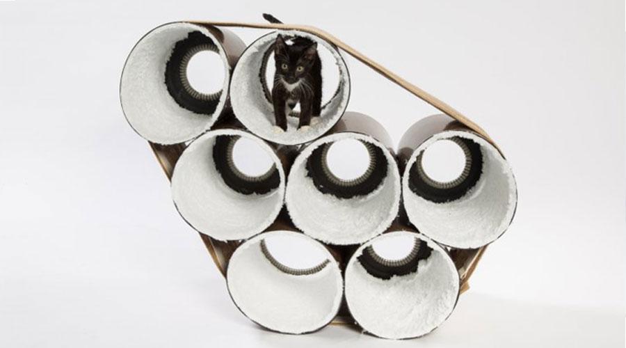 черный котенок в лабиринте