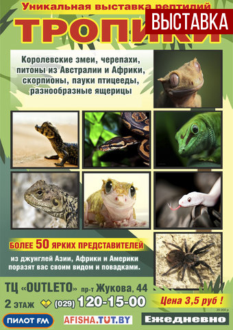 выставка рептилий в минске