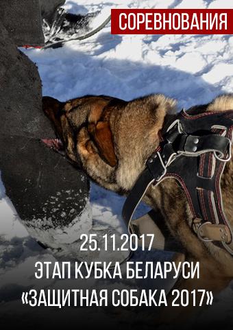Этап Кубка Беларуси «Защитная собака 2017»