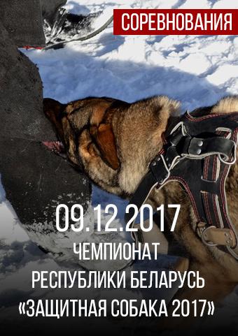 чемпионат защитная собака 2017