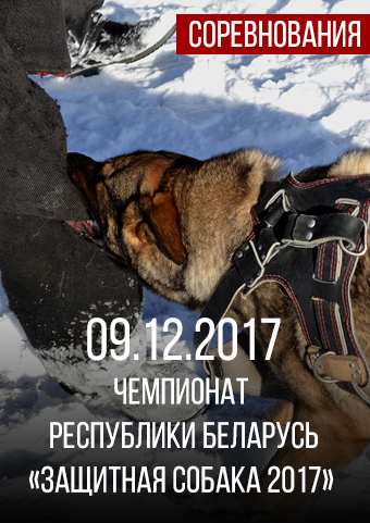 Чемпионат Республики Беларусь «Защитная собака 2017»