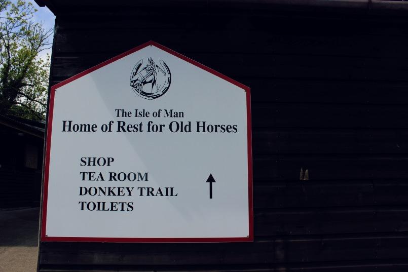 Дом-отдыха для лошадей-пенсионеров