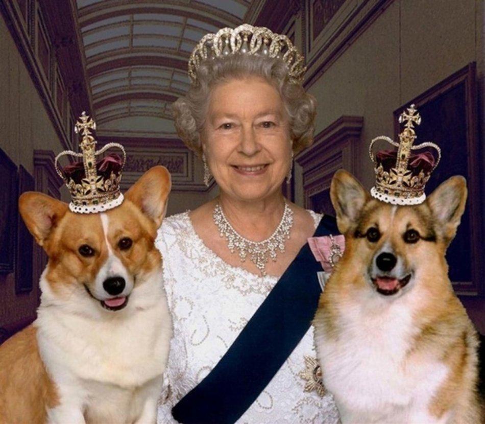 Елизавета II и вельш-корги