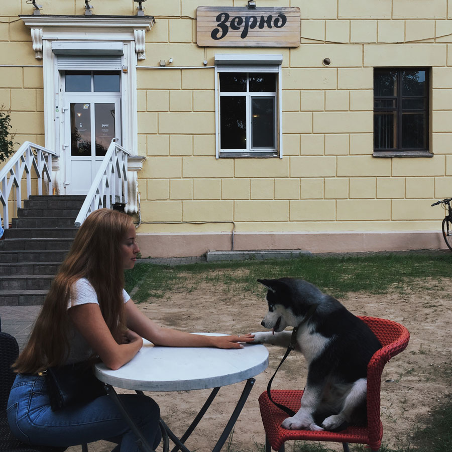 девушка с собакой хаски за столиком