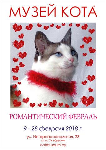 Романтический Февраль в Музее Кота