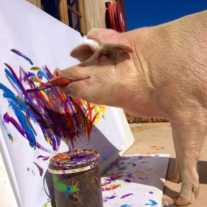свинья,художник,краски,акварель