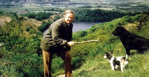 Джеймс Хэрриот и его собаки