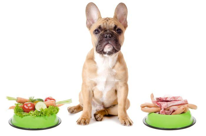 питание для животных, натуральное питание для животных, рацион животных, натуралка