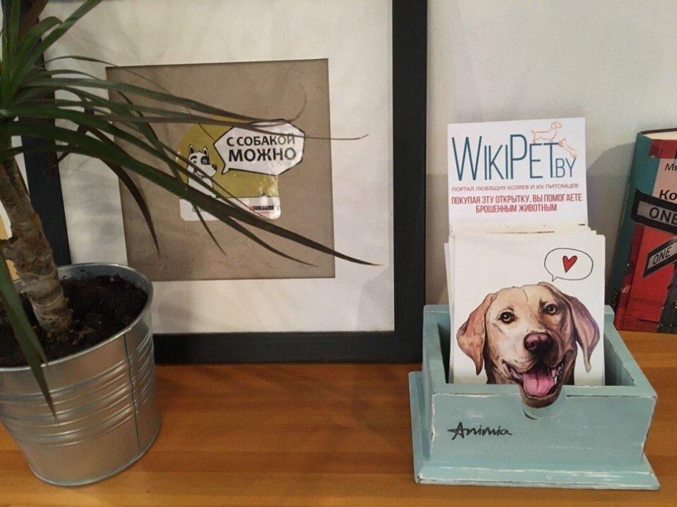 благотворительность, открытки, википет, помощь животным, домашнее животное