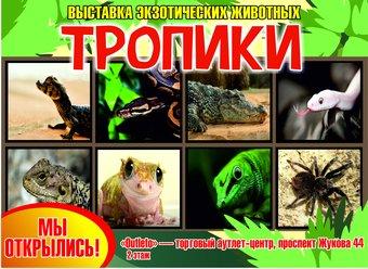 Выставка рептилий Тропики
