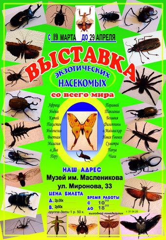 Выставка экзотических насекомых