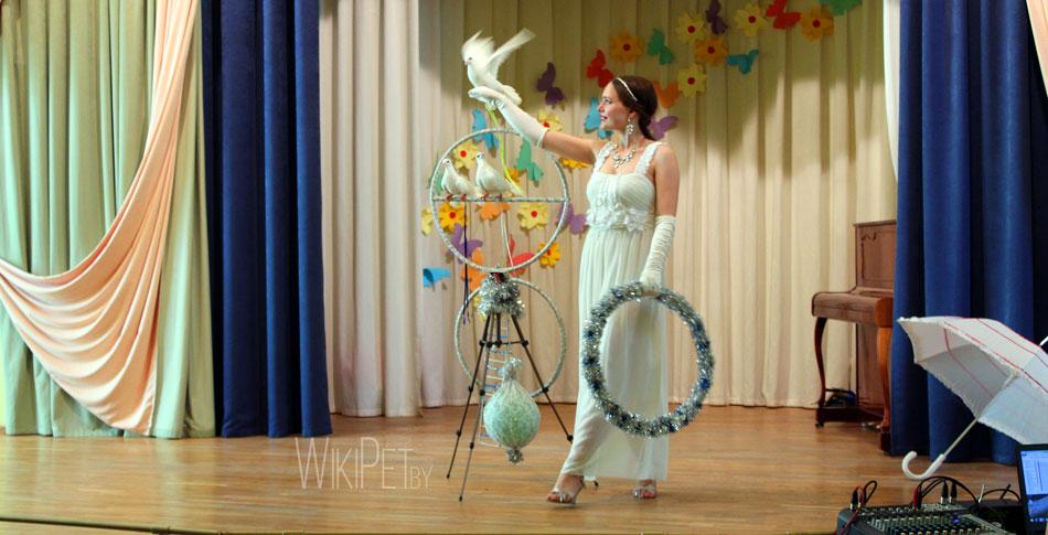 Голуби в цирке фото