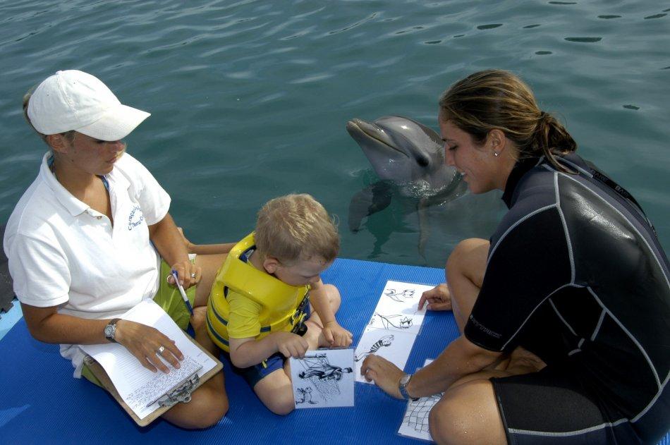 Дельфинотерапия фото