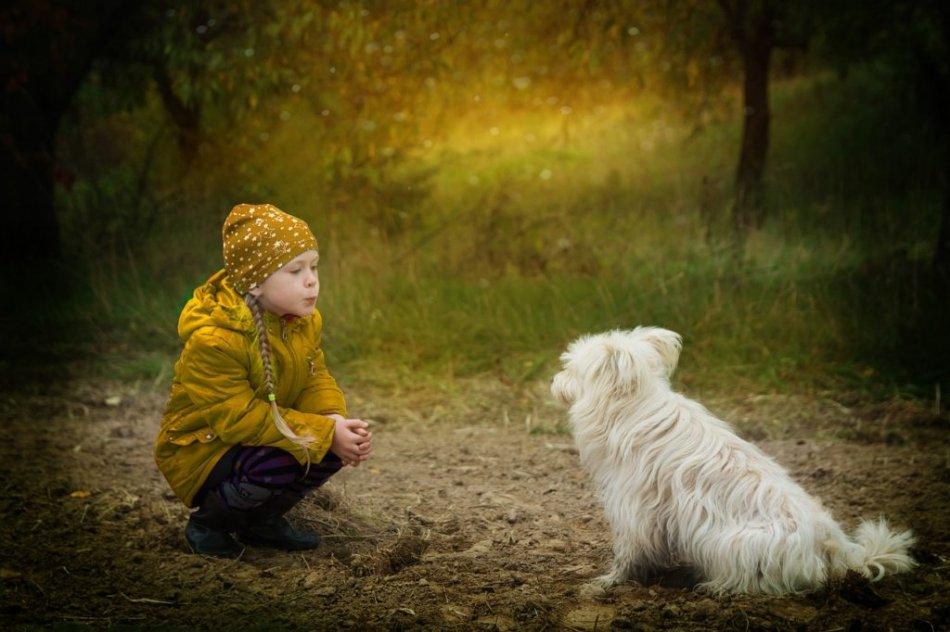 Собака и ребенок фото