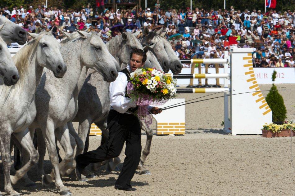 Лоренцо и свободные лошади фото