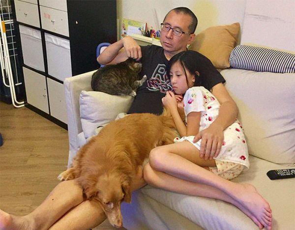 семья и домашние питомцы
