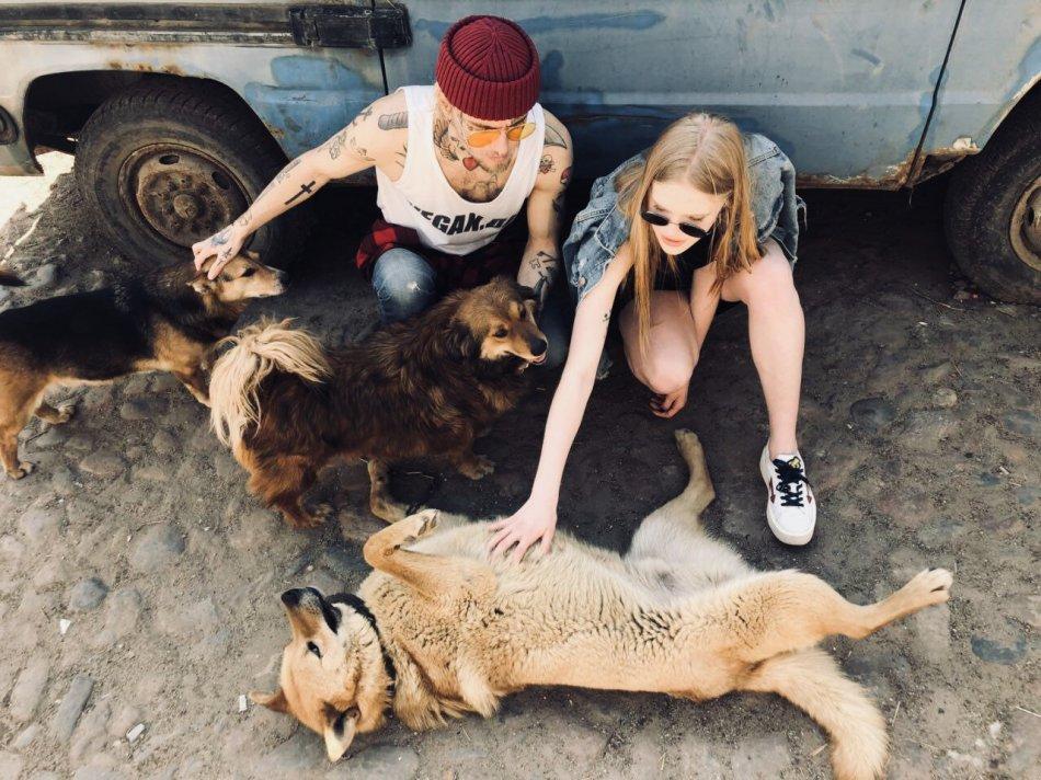Веганы и собаки из приюта фото