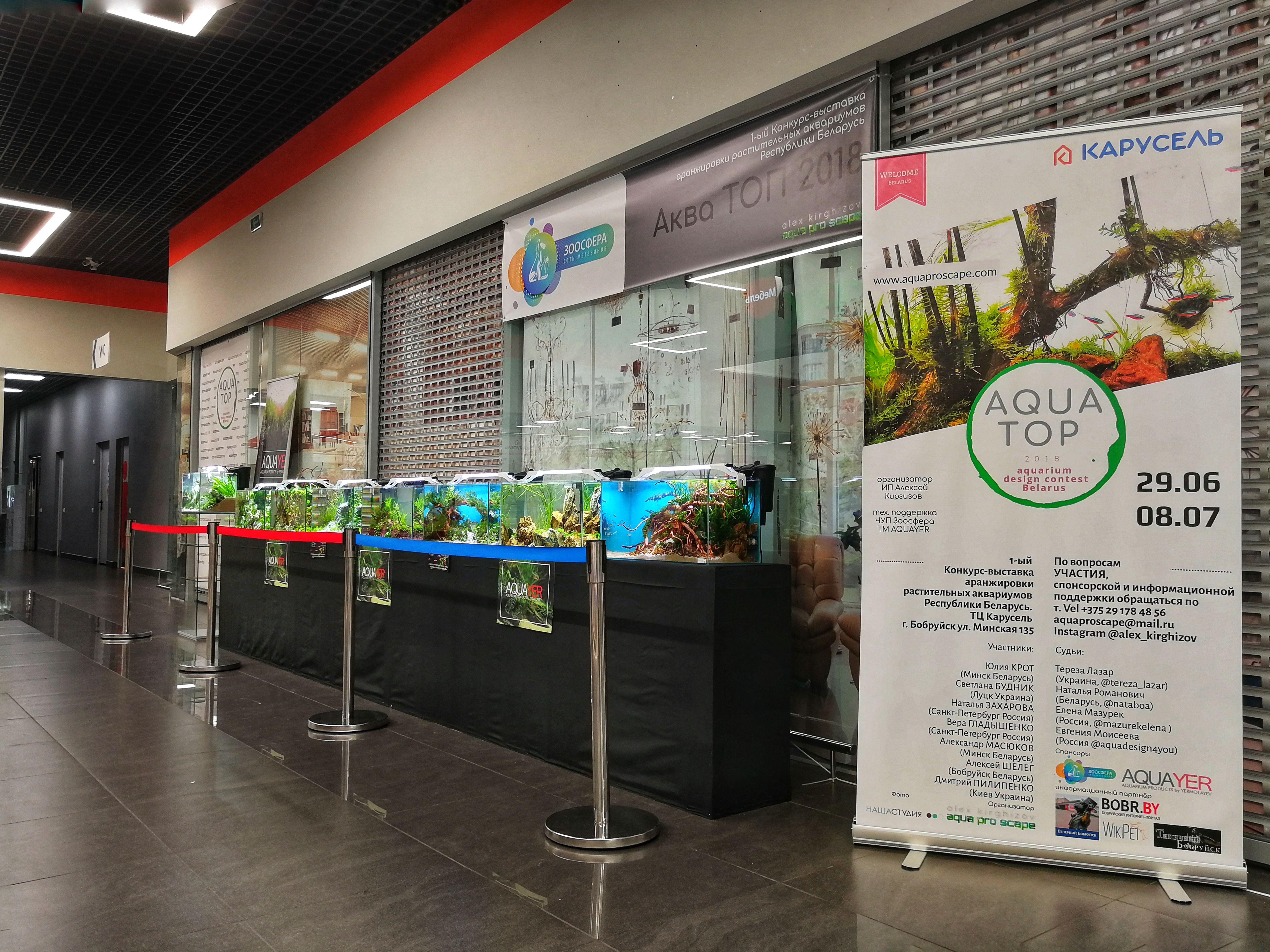 конкурс аранжировки растительных аквариумов Беларуси Аква ТОП 2018