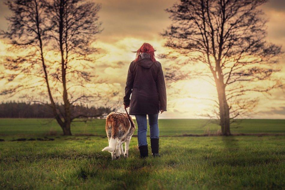 Человек идет с собакой фото