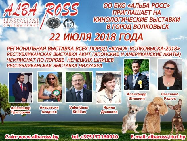 Афиша выставки ,выставка собак, пудель, той ,чихуа-хуа, люди,эксперты