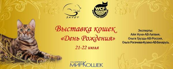 WCF Международная Выставка Кошек