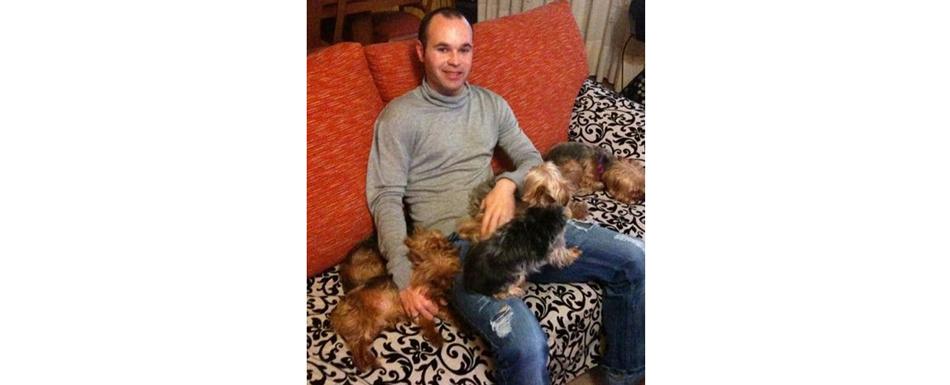Андрес-ИНЬЕСТА-(Барселона,-футбол)-и-его-собаки