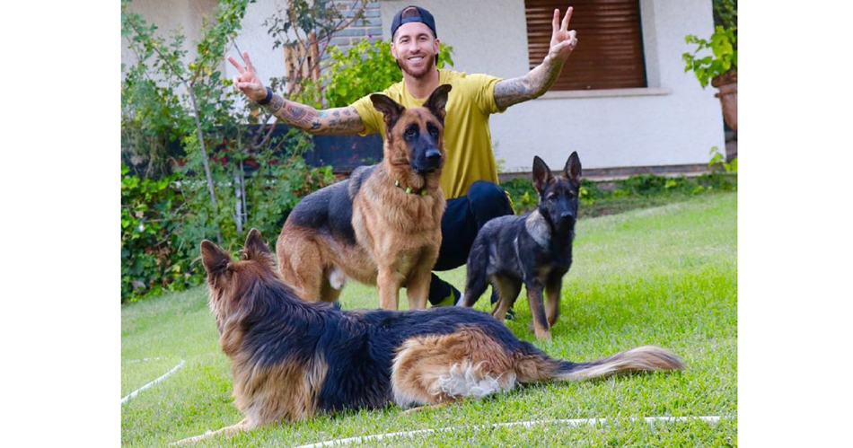 Серхио-Рамос и его собаки