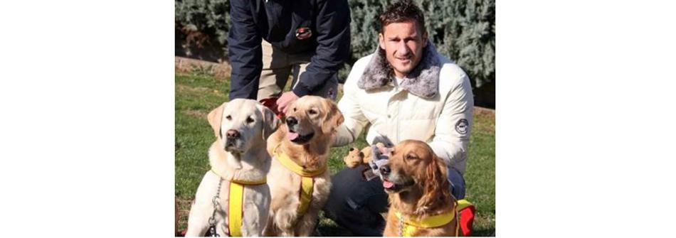 Франческо-ТОТТИ-(Рома,-футбол)-и-его-собаки