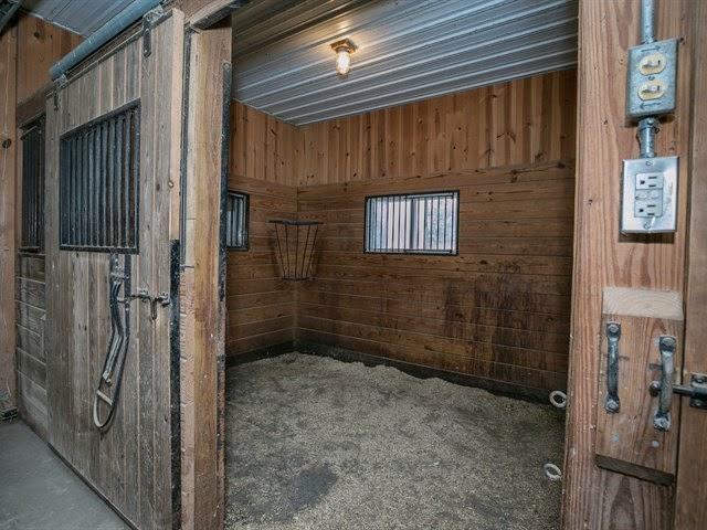 Подстилка для лошади опилки фото