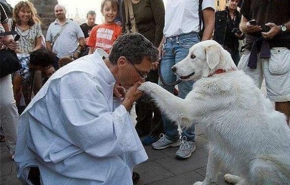Священник целует лапу собаке фото