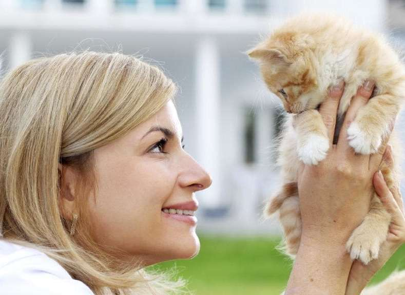 Котенок похож на хозяйку фото