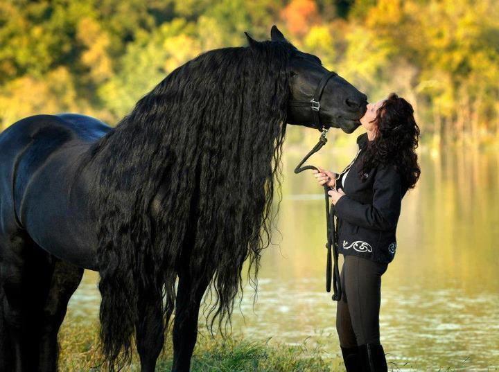 Лошадь похожа на хозяйку фото