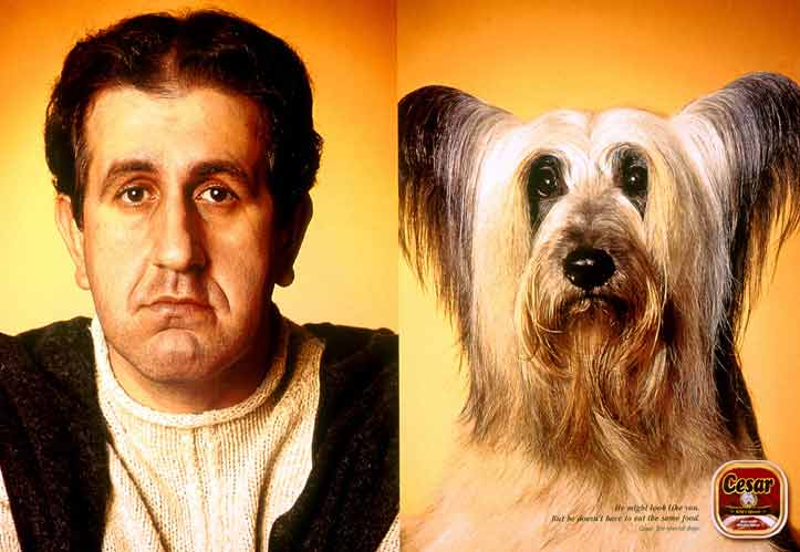 Собака похожа на своего хозяина фото